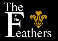 Three Feathers Ltd
